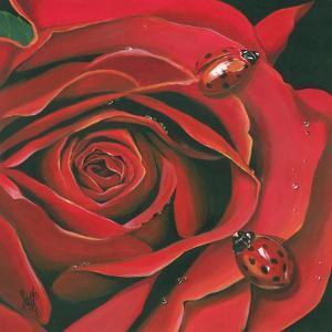 Red Flower by Scott Westmoreland