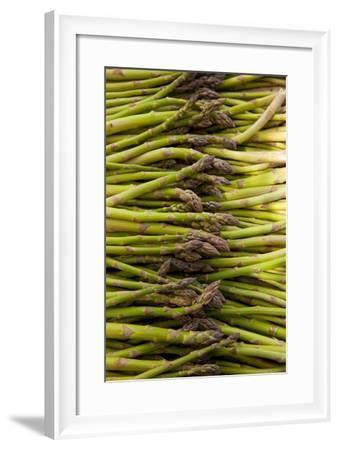 Scotts Asparagus Farm, Marlborough, South Island, New Zealand-Douglas Peebles-Framed Photographic Print