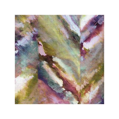 https://imgc.artprintimages.com/img/print/scrape-1_u-l-f900np0.jpg?p=0