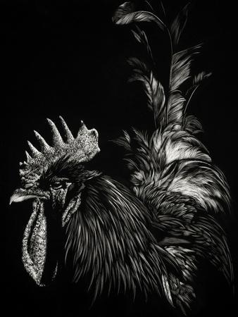 https://imgc.artprintimages.com/img/print/scratchboard-tyrant_u-l-q19bs080.jpg?p=0