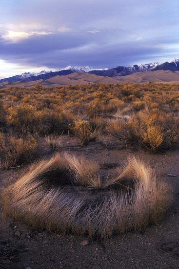 Scrub with Dunes and Mountains in the Distance, Great Sand Dunes National Park-Keith Ladzinski-Photographic Print