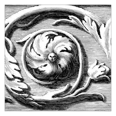 https://imgc.artprintimages.com/img/print/sculptural-detail-v_u-l-pxn0ry0.jpg?p=0