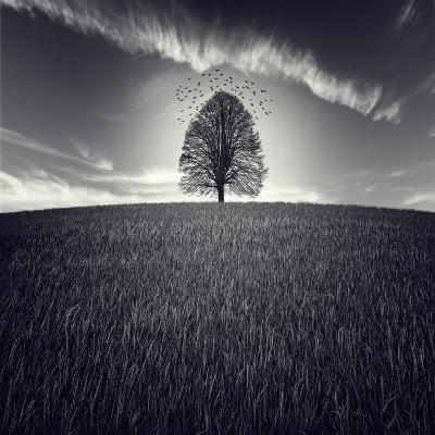 Se Va La Vida-Luis Beltran-Photographic Print