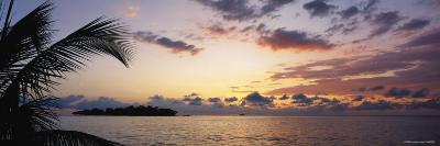 Sea at Dusk, Negril, Jamaica--Photographic Print