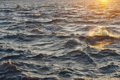 Sea at Sunset, Korcula Island, Croatia-Guido Cozzi-Photographic Print