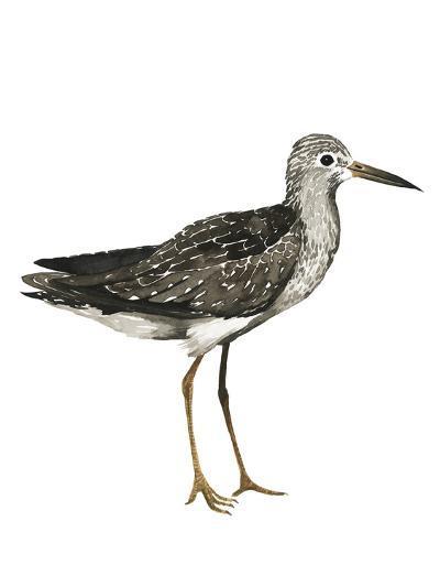 Sea Bird III-Grace Popp-Art Print