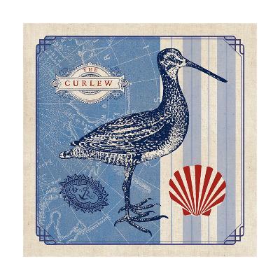 Sea Bird III- Studio Mousseau-Art Print