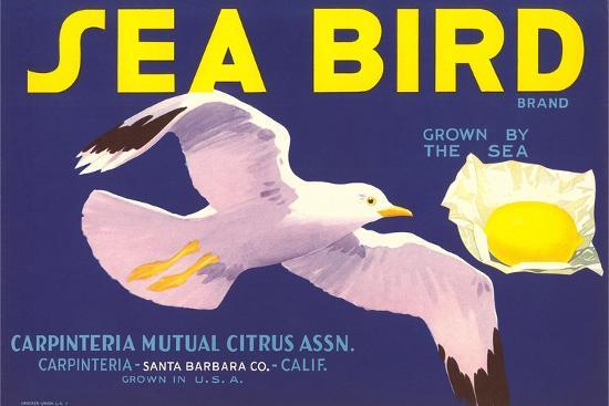 Sea Bird Lemon Label--Art Print