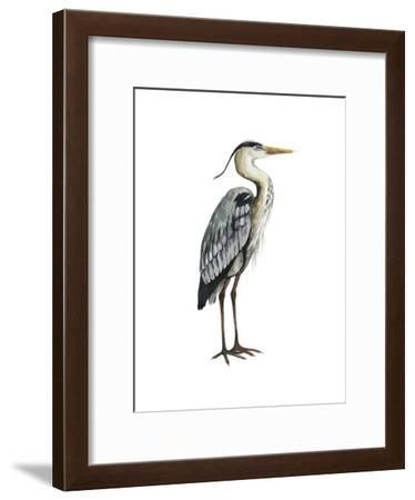 Sea Bird V-Grace Popp-Framed Art Print
