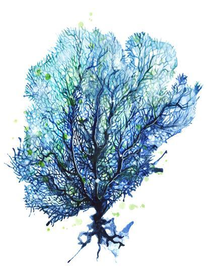 Sea Fan Aqua-Sam Nagel-Art Print