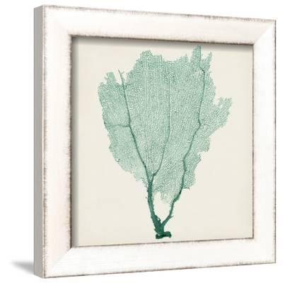 Sea Fan I-Vision Studio-Framed Art Print