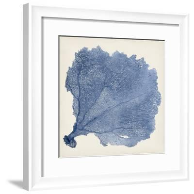 Sea Fan V-Vision Studio-Framed Premium Giclee Print