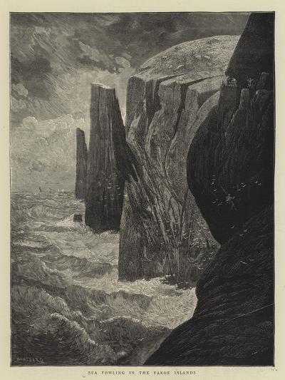Sea Fowling in the Faroe Islands-Charles Auguste Loye-Giclee Print