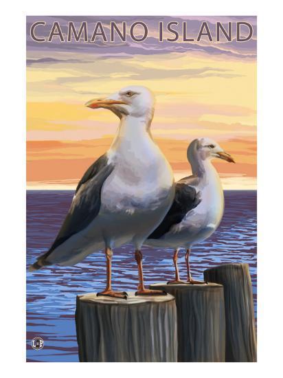 Sea Gulls - Camano Island, WA-Lantern Press-Art Print