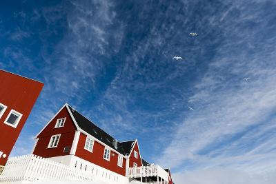 Sea Gulls Flying in the Blue Sky over a Red House-Sergio Pitamitz-Photographic Print