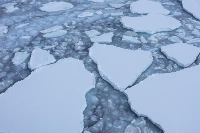Sea Ice Creates Texture on the Water's Surface-Stephen Alvarez-Photographic Print