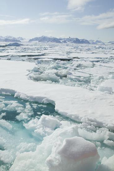 Sea Ice Surrounding Islands-DLILLC-Photographic Print
