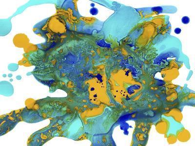 Sea Life Fantasy-Amy Vangsgard-Giclee Print