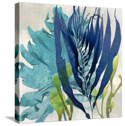 Sea Nature II-Melonie Miller-Stretched Canvas Print
