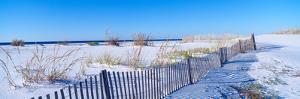 Sea Oats and Fence Along White Sand Beach at Santa Rosa Island Near Pensacola, Florida