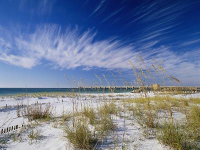 Sea Oats and White Sand Dunes-James Randklev-Photographic Print
