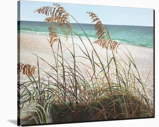 Sea Oats Stretched Canvas Print by Pamela Jablonski | Art.com
