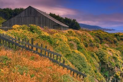 Sea Ranch Barn-Vincent James-Photographic Print