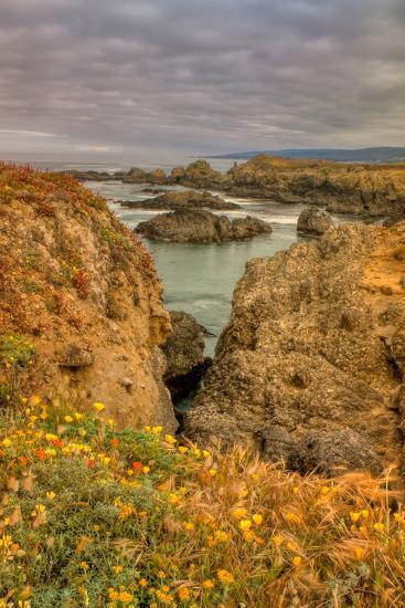 Sea Ranch Seascape-Vincent James-Photographic Print