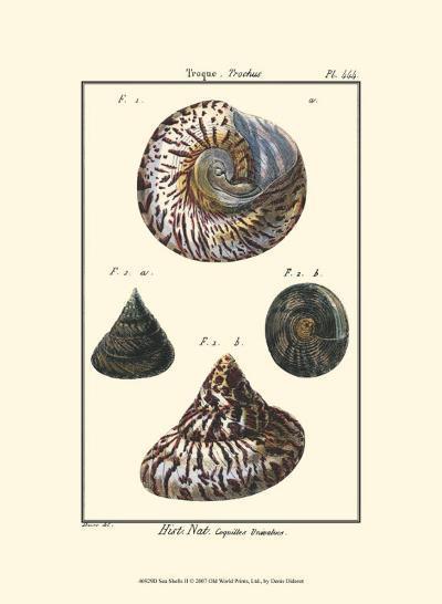 Sea Shells II-Denis Diderot-Art Print