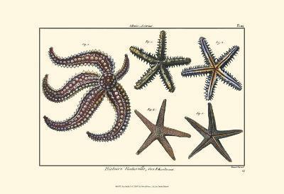 Sea Shells X-Denis Diderot-Art Print