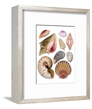 Sea Souvenirs II-Grace Popp-Framed Art Print