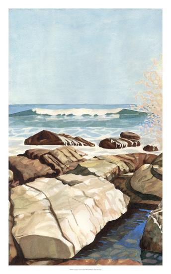 Sea Spray I-Dianne Miller-Art Print