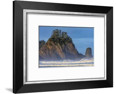 Sea stacks and waves at first light on Rialto Beach in Olympic National Park, Washington State, USA-Chuck Haney-Framed Photographic Print