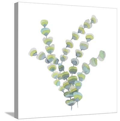 Sea Tangle I-Sandra Jacobs-Stretched Canvas Print