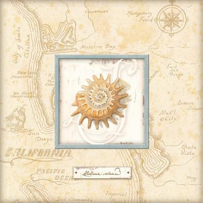 Sea Treasure III-Charlene Audrey-Art Print