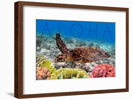 Sea Turtle and Coral - Aloha-Lantern Press-Framed Art Print