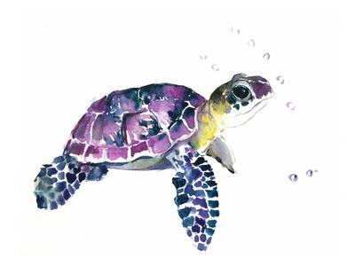 https://imgc.artprintimages.com/img/print/sea-turtle_u-l-f7rphx0.jpg?p=0