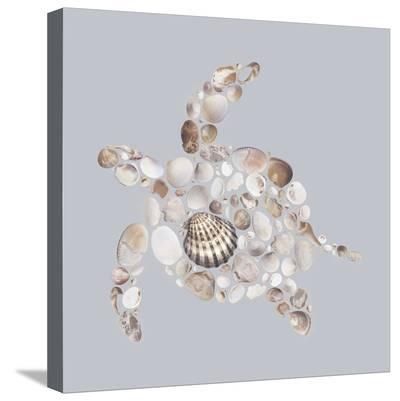 Sea Turtle-Justin Lloyd-Stretched Canvas Print