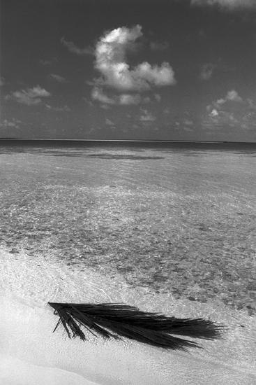 Sea View--Photographic Print