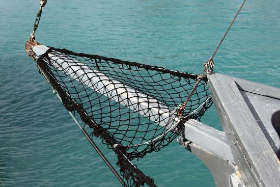 Sea, Water, Fishing Boat, Net-Catharina Lux-Photographic Print