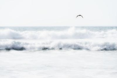 Sea Waves with Flying Seagull- Sarosa-Photographic Print
