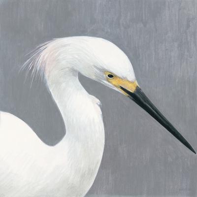 Seabird Thoughts 2-Norman Wyatt Jr^-Premium Giclee Print