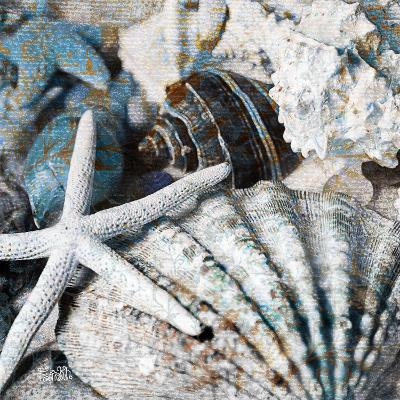 Seachells in Blue II--Art Print
