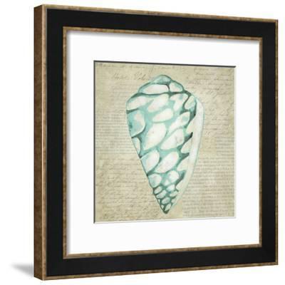 Seafoam Shell IV-Chariklia Zarris-Framed Art Print