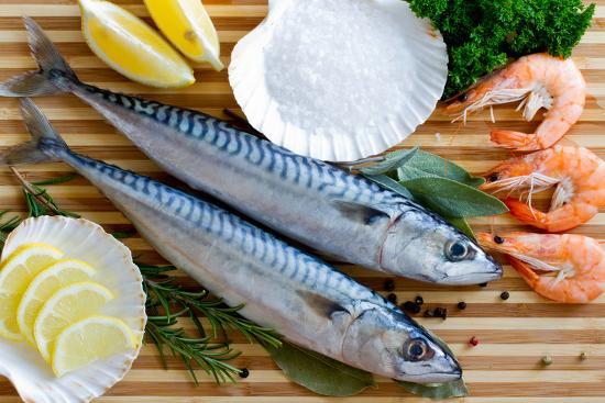 Seafood, Fish - Fresh Mackerel and Shrimps in Cuisine-Gorilla-Photographic Print