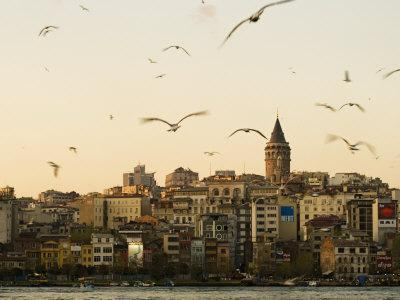 https://imgc.artprintimages.com/img/print/seagulls-flock-above-the-golden-horn-istanbul-with-the-galata-tower-in-the-background_u-l-pxsswt0.jpg?p=0