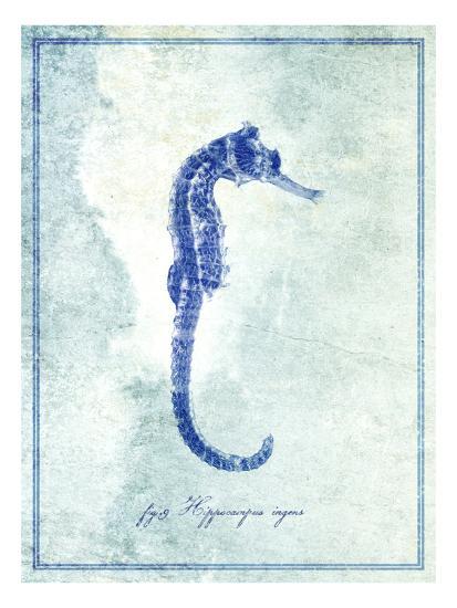 Seahorse B-GI ArtLab-Premium Photographic Print