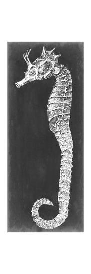 Seahorse Blueprint I-Vision Studio-Art Print