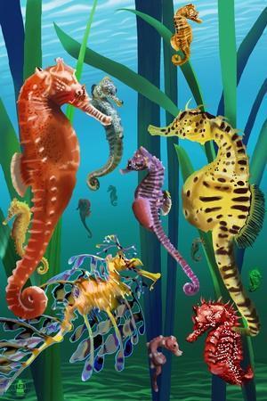 https://imgc.artprintimages.com/img/print/seahorses_u-l-q1gpw7x0.jpg?p=0