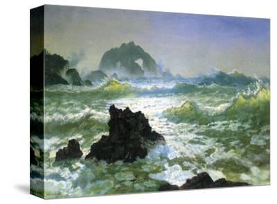 Seal Rock-Albert Bierstadt-Stretched Canvas Print